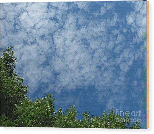 Fluffy Summer Clouds 1 Wood Print