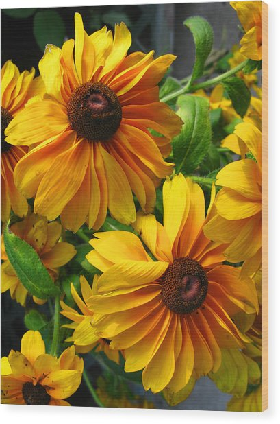 Fluffy Yellows Wood Print
