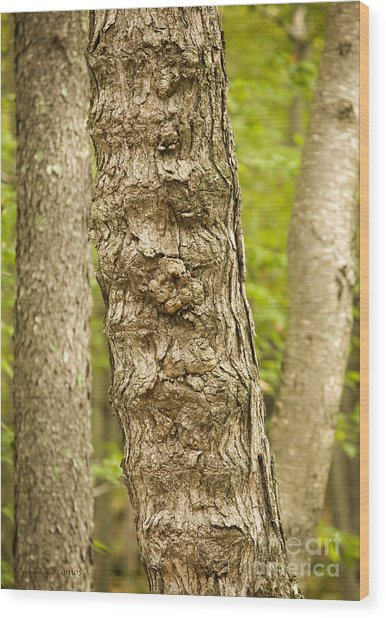 Fluted Tree Wood Print