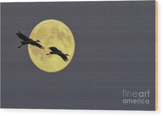 Moonlight Flight Wood Print