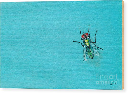 Fly On The Wall Wood Print