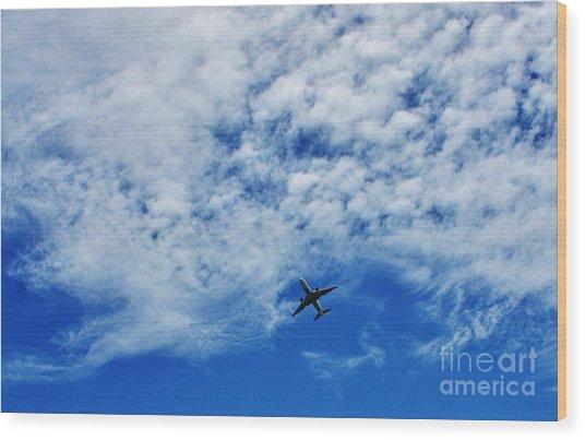 Flying Wood Print by Craig Wood