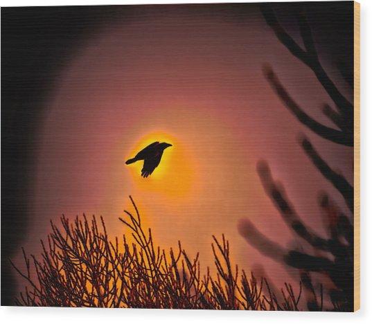 Flying - Leif Sohlman Wood Print