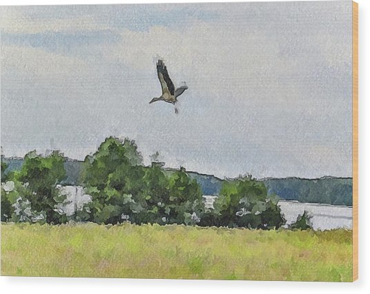 Flying Nature Wood Print by Yury Malkov