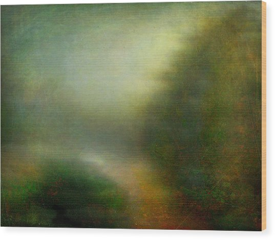 Fog #3 - Silent Words Wood Print by Alfredo Gonzalez