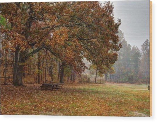 Fog And Foliage Wood Print
