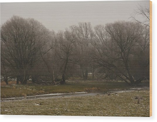 Fog Day Wood Print by BandC  Photography