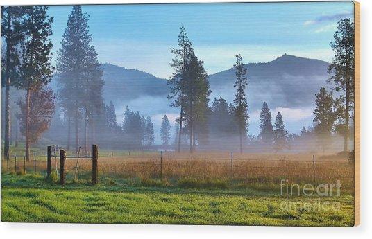 Fog Highlights Wood Print