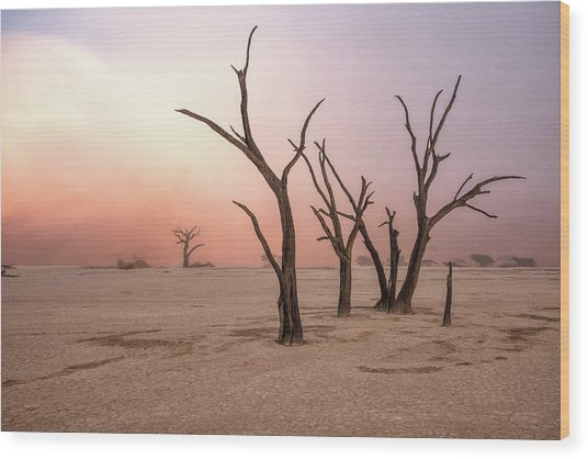 Fog In Deadvlei Wood Print