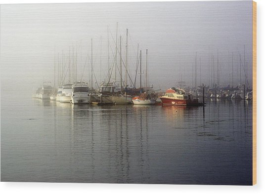 Fog Light In The Harbor Wood Print