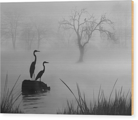 Fog On The Lake Wood Print