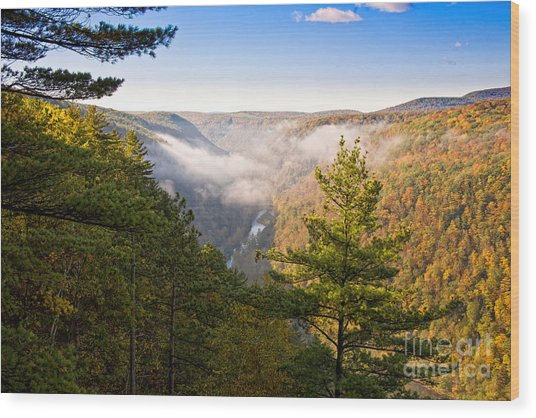Fog Over The Canyon Wood Print
