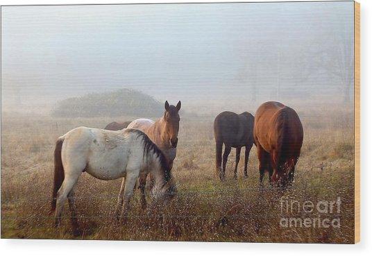 Fog Ponies Wood Print