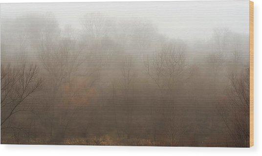 Fog Riverside Park Wood Print
