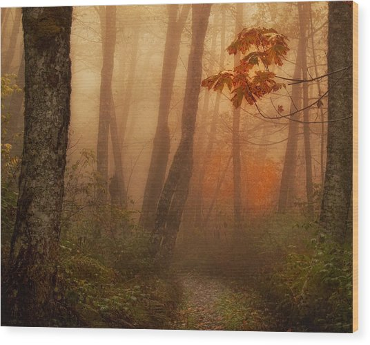 Foggy Autumn Wood Print