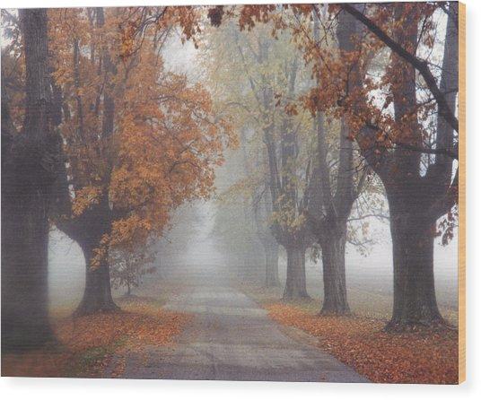 Foggy Driveway Wood Print