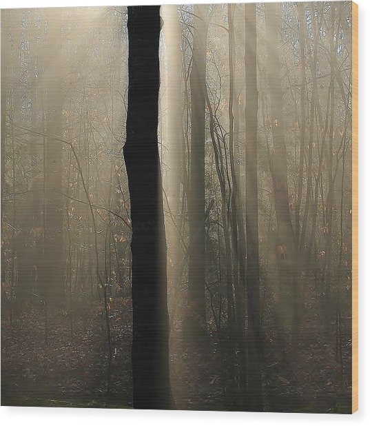 Foggy Mornin' Wood Print