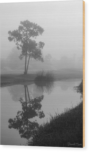 Foggy Morning 2 Wood Print