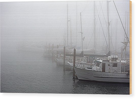 Foggy Morning In Charleston Harbor Wood Print