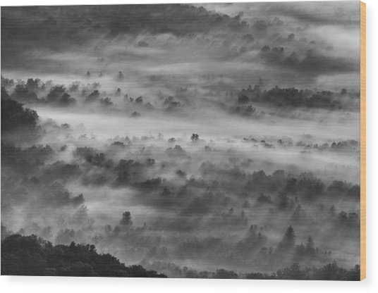 Foggy Morning On The Blue Ridge Parkway Wood Print