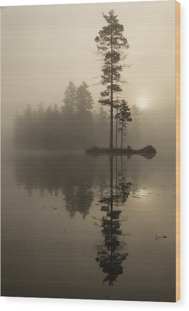 Foggy Morning Sunrise At The Lake Wood Print