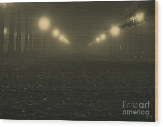 Foggy Night In A Park Wood Print