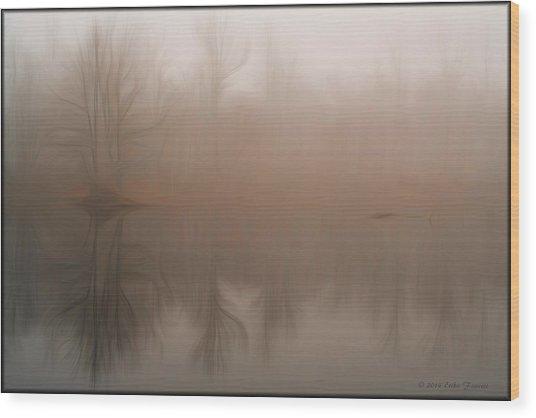 Foggy Reflection Wood Print