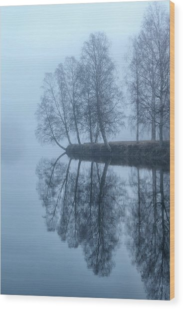 Foggy River Day Wood Print