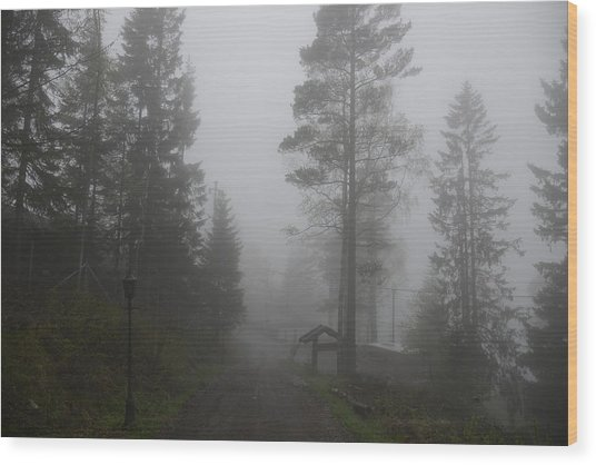 Foggy Romance 1 Wood Print
