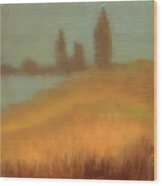 Foggy Skyline From Felixs Wood Print