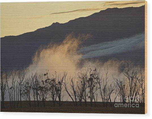 Foggy Sunset Wood Print
