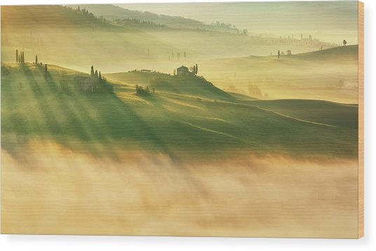 Foggy Valley... Wood Print
