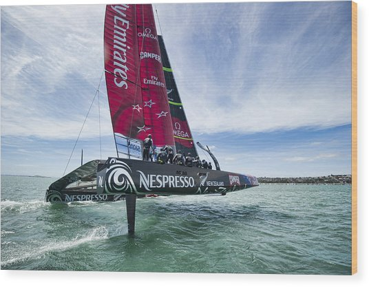Foiling One Wood Print by Chris Cameron