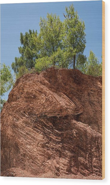 Folded Rock Strata Wood Print by David Parker/science Photo Library