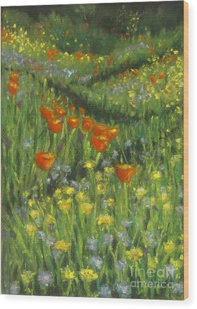 Poppy Trail Wood Print