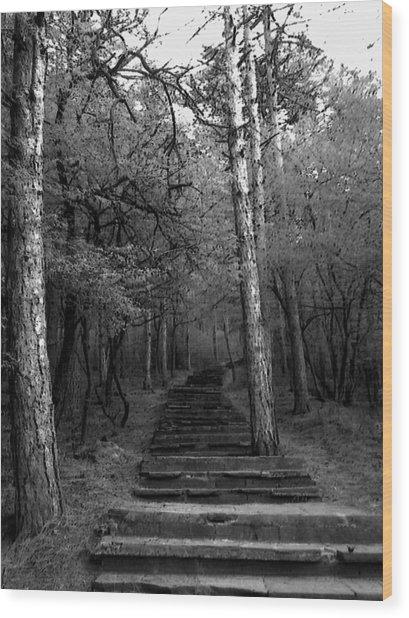 Follow Me... Wood Print