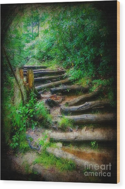 Follow Me To An Adventure Wood Print by Lorraine Heath