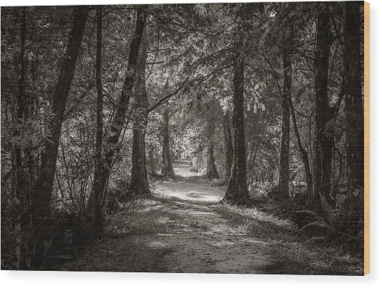 Follow The Light Wood Print