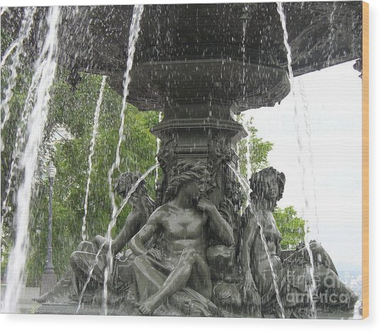 Fontaine De Tourny Wood Print