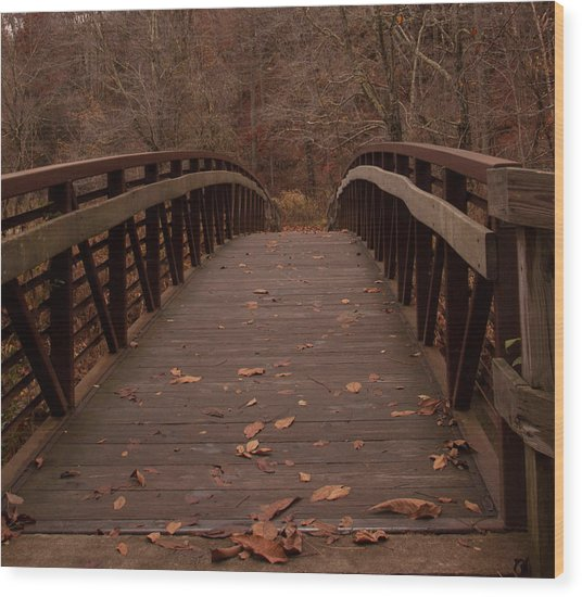 Footbridge At Conkle's Hollow Wood Print