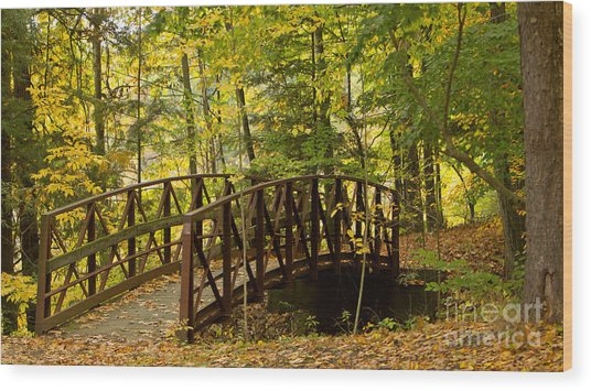 Footbridge At Letchworth Wood Print