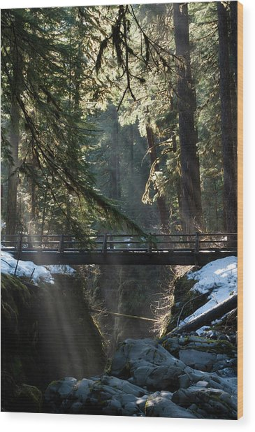 Footbridge Near Sol Duc Falls, Olympic Wood Print