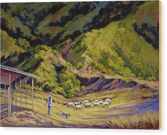 Foothill Sheepherder Wood Print