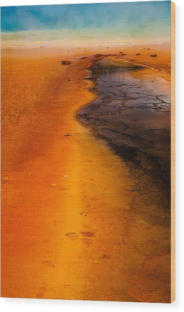 Footprints And Reflections Wood Print by Shawn Brannon