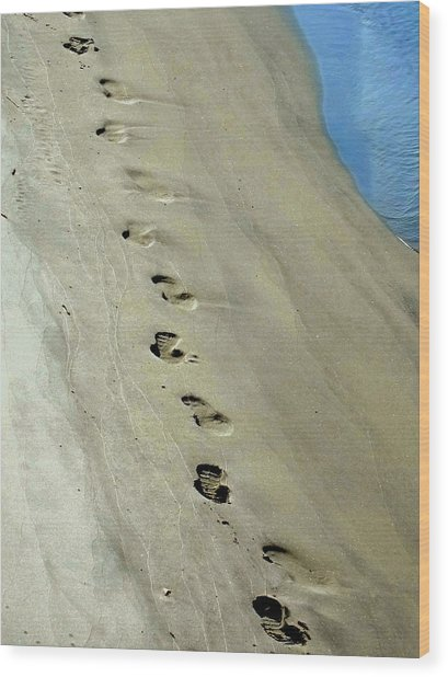 Footprints At Breech Inlet Wood Print