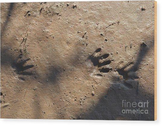 Footprints2 Wood Print