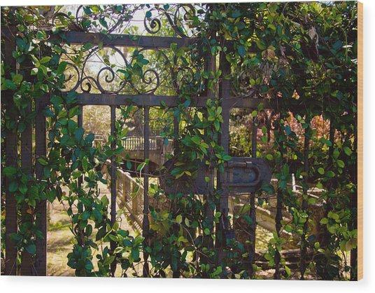 Forbidden Garden Wood Print