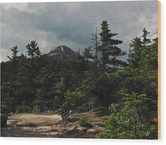 Forbidden Wood Print