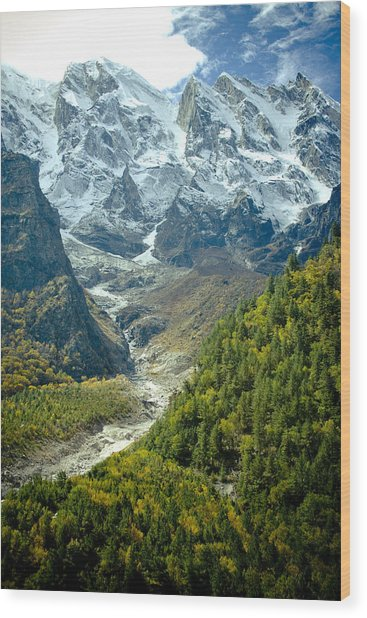 Forest And Mountains In Himalayas Wood Print