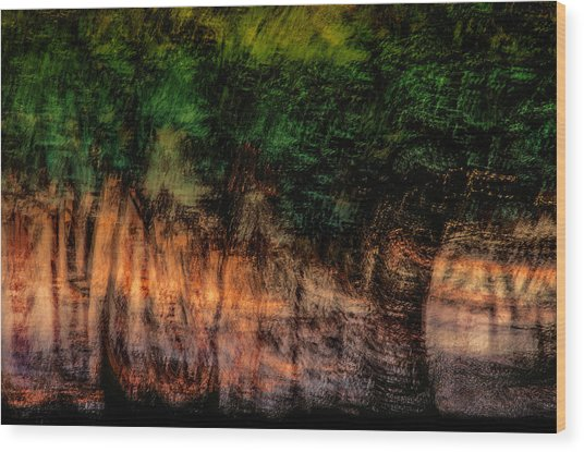 Forest At Sundown Wood Print